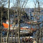 Exciting nautical action visible through the trees.  Ship repair dock, and lifeboat training facility.