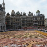 Town Square - There was a dried flower show on.  This was the best photo of Brussels we managed.