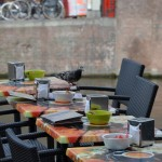 Street cafes in Amsterdam